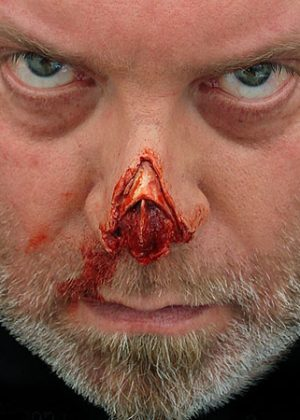 shredded nose tip prosthetic