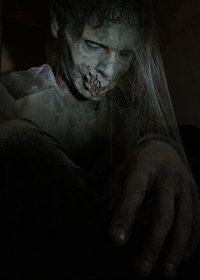 dusty-zombie1377511721521b292981794