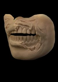 zombie mouth prosthetics