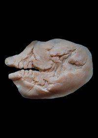 halloween prosthetics