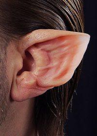 ear prosthetic